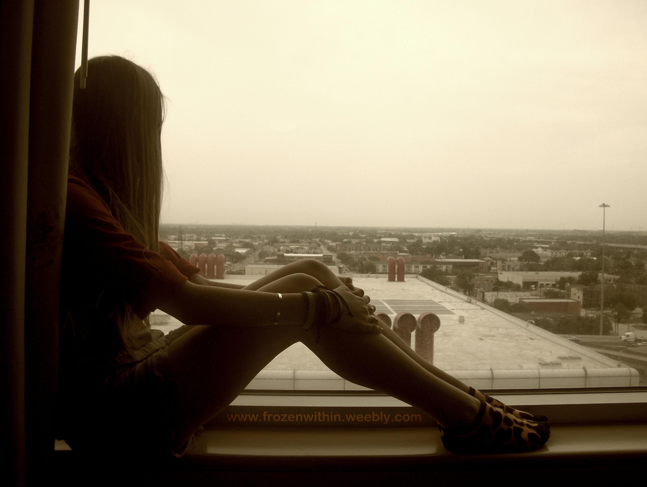 Sit In Window between birds of prey #190 - a window to the world