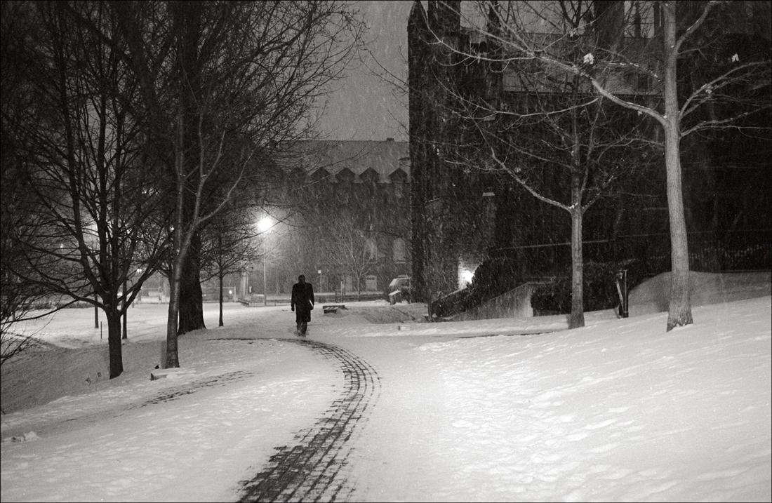 sol invictus trees in winter lyrics